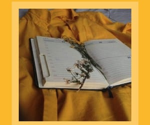 book, wallpaper, and yellow image