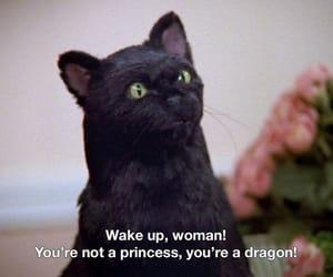 salem, woman, and cat image