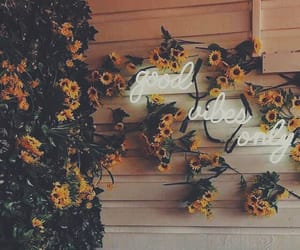 flowers, neon, and sunflower image
