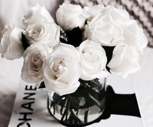 flowers, chanel, and rose image