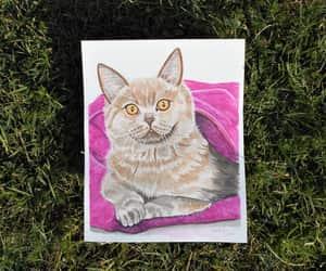 cat, etsy, and original art image
