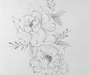 art, drawing, and peonies image