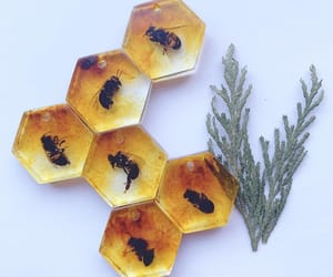 bee, buzz, and hexagon image