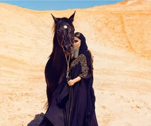 horse, black, and fashion image