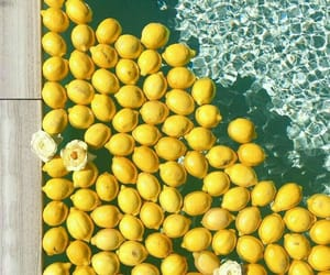yellow, lemon, and pool image