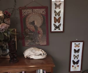 aesthetic, alternative, and butterfly image