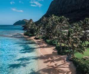 beach, hawaii, and nature image