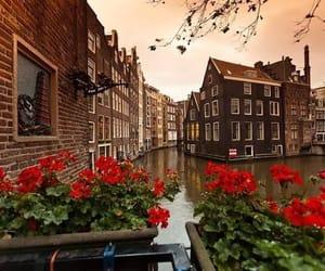 amsterdam, cityscape, and culture image