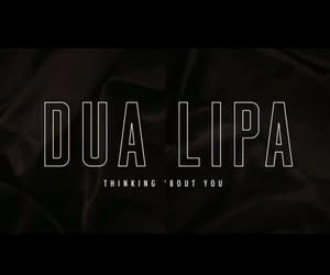 album, Lyrics, and dua lipa image