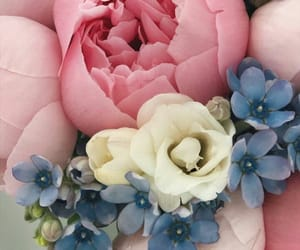 blue, bouquet, and flower image