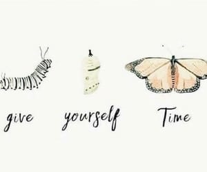 butterfly, caterpillar, and self love image