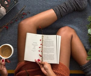 books, cozy, and fall image