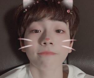 wonjun, produce 101, and produce x 101 image