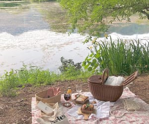 aesthetic, picnic, and cool image