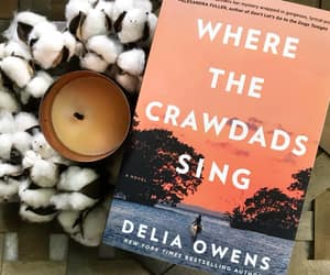 books, ergodebooks, and where the crawdads sing image