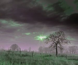 cyber, green, and purple image