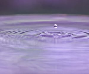 closeup, macrophotography, and droplet image