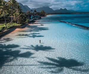 hawaii, places, and sea image