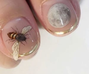 bee, moon, and nails image