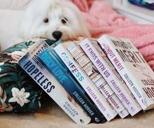 amor, books, and drama image