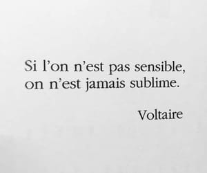 text, voltaire, and texte image