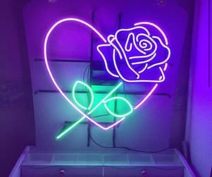 purple, neon, and rose image