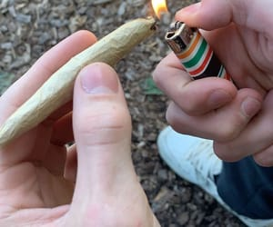 blunt, drug, and joint image