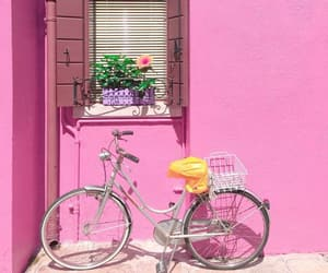 bicycle, photography, and pink image