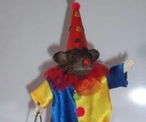 clown, meme, and rat image