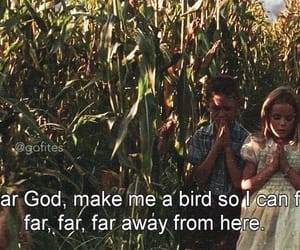 forrest gump, movies, and quotes image