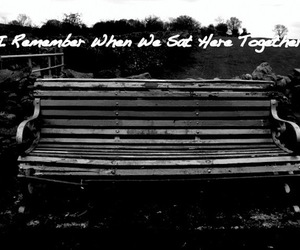 b&w, bench, and nature image