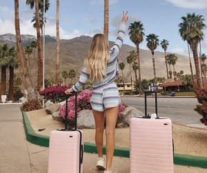explore, luggage, and palm springs image