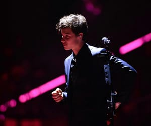 shawn mendes, concert, and singer image