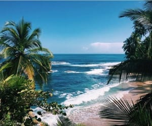 beach, ocean, and tropical image