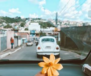 bloom, car, and flowes image