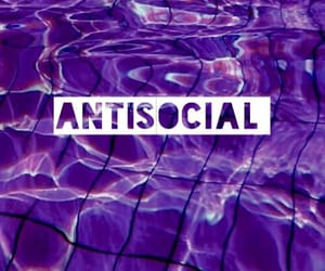 antisocial, purple, and tumblr image