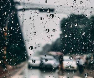 background, natural, and raining image