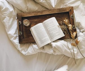 aesthetic, book photography, and bed image