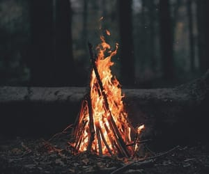 adventure, fire, and forest image