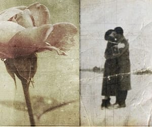 couple, flower, and rose image