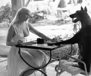dog, madonna, and black and white image