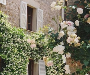 flowers, Houses, and mallorca image