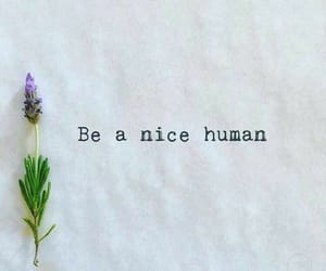 human, nice, and quote image