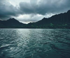 beach, green, and hawaii image