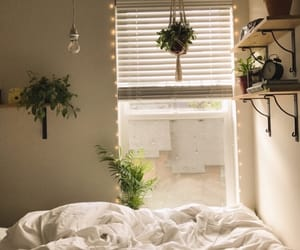 bed sheets, succulent, and cozy image
