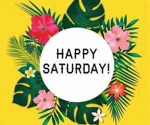 happy saturday, daily message, and sending good vibes image