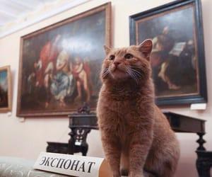 animals, gallery, and искусство image