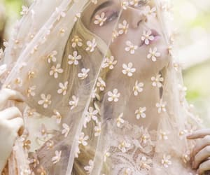 beautiful, delicate, and flowers image