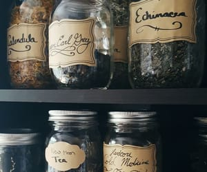 witch, aesthetic, and spices image