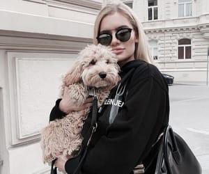 dog, fashion, and black image